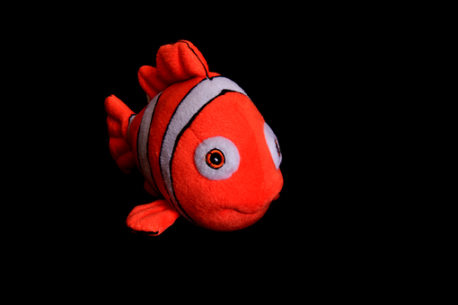 goldfish-1435817__340